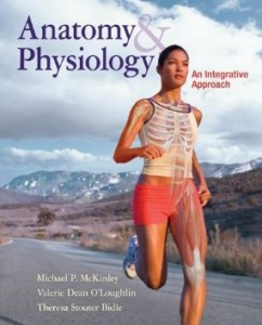 Test bank for Anatomy and Physiology 1st Edition by McKinley