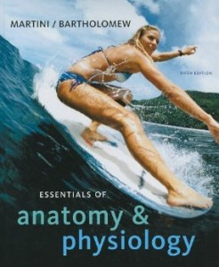 Test bank for Essentials of Anatomy and Physiology 5th Edition by Martini