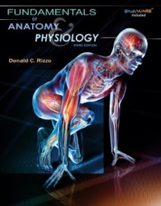 Test bank for Fundamentals of Anatomy and Physiology 3rd Edition by Rizzo