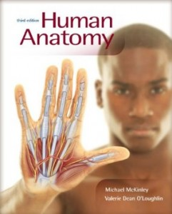 Test bank for Human Anatomy 3rd Edition by McKinley