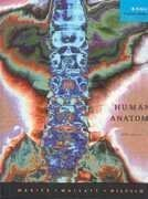 Test bank for Human Anatomy 5th Edition by Marieb