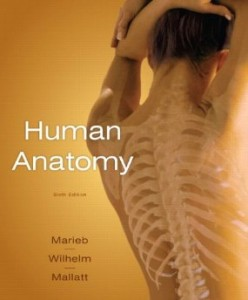 Test bank for Human Anatomy 6th Edition by Marieb