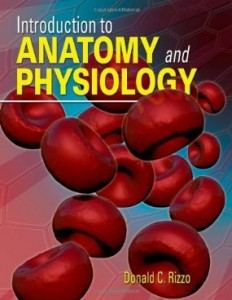 Test bank for Introduction to Anatomy and Physiology 1st Edition by Rizzo