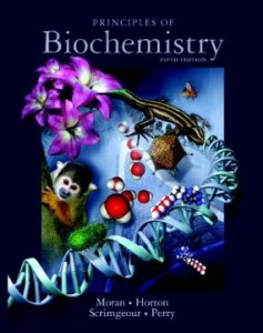 Test bank for Principles of Biochemistry 5th Edition by Moran