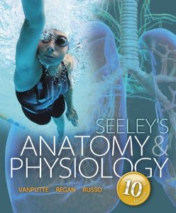 Test bank for Seeleys Anatomy and Physiology 10th Edition by VanPutte