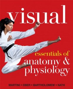 Test bank for Visual Essentials of Anatomy and Physiology by Martini